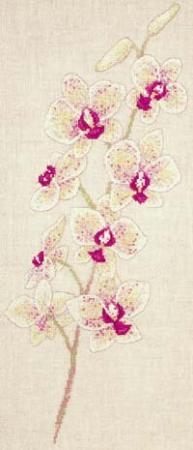 Orchideák - DMC leszámolható keresztszemes készlet
