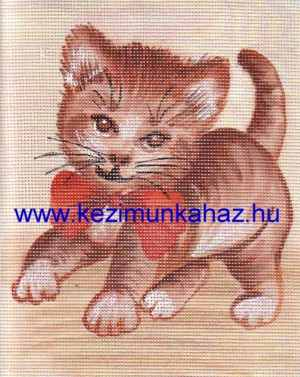 Cica 2 - Előfestett gobelin