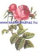 Rózsa - Tűgobelin