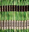 DMC 114 - színátmenetes fűzöld osztott hímzőfonal