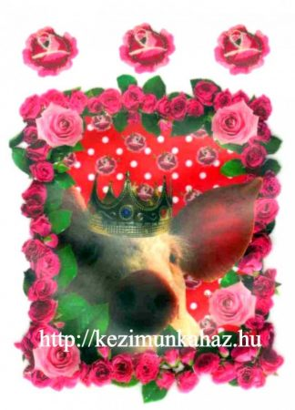 Állatok malacka - ruhára vasalható matrica