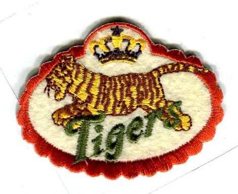 Tigers - ruhára vasalható textil matrica